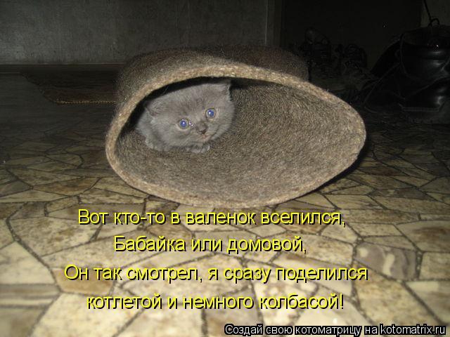 Котоматрица: Вот кто-то в валенок вселился, Бабайка или домовой, Он так смотрел, я сразу поделился котлетой и немного колбасой!