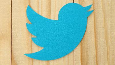 Роскомнадзор пообещал проверить Twitter