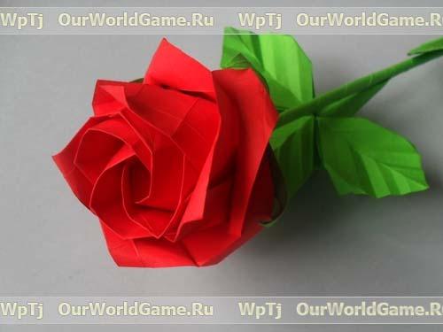 Оригами роза Кавасаки (новая роза Кавасаки)