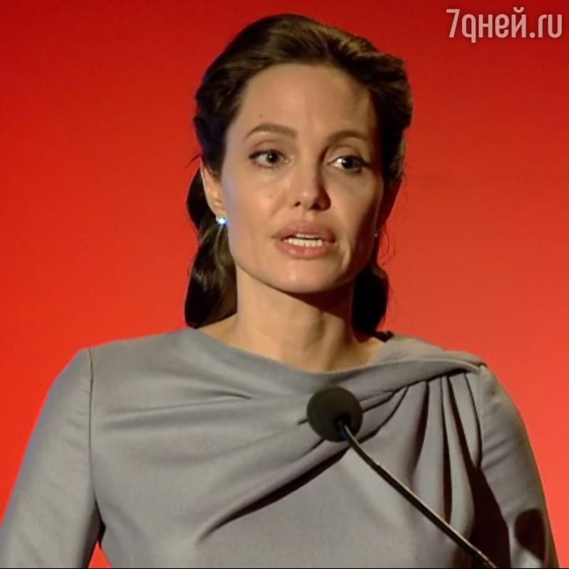 Анджелина Джоли стала профессором