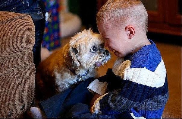 Настоящий друг всегда поддержит в трудную минуту