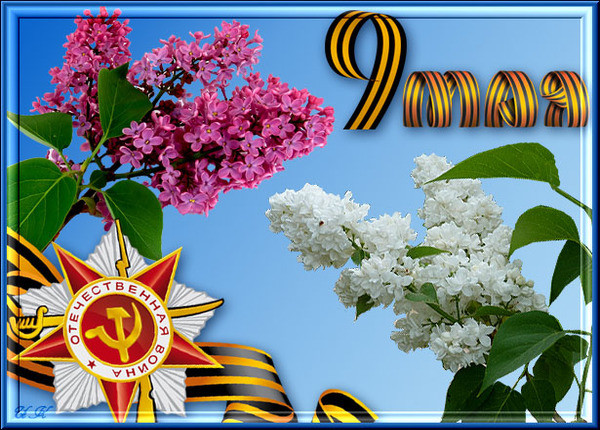 Дорогие друзья, с праздником Великой Победы!!!