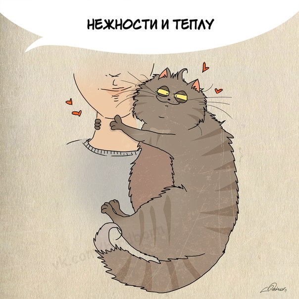 1 марта отмечается День кошек в России :)