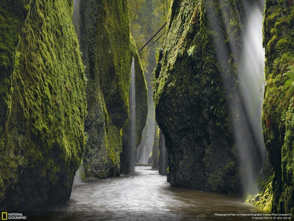 bestofnatgeo27 Лучшие снимки года от National Geographic