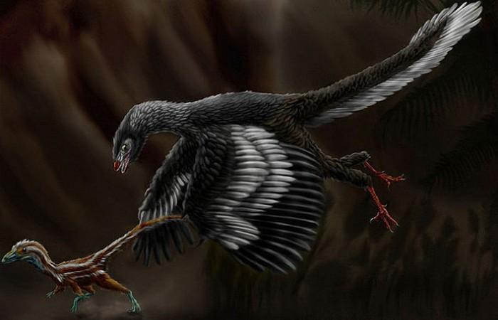 2. Самая древняя птица - протоавис животные, земля, наука, эволюция