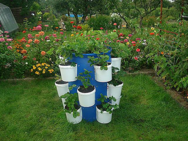 Сайты для дачи и сада своими руками