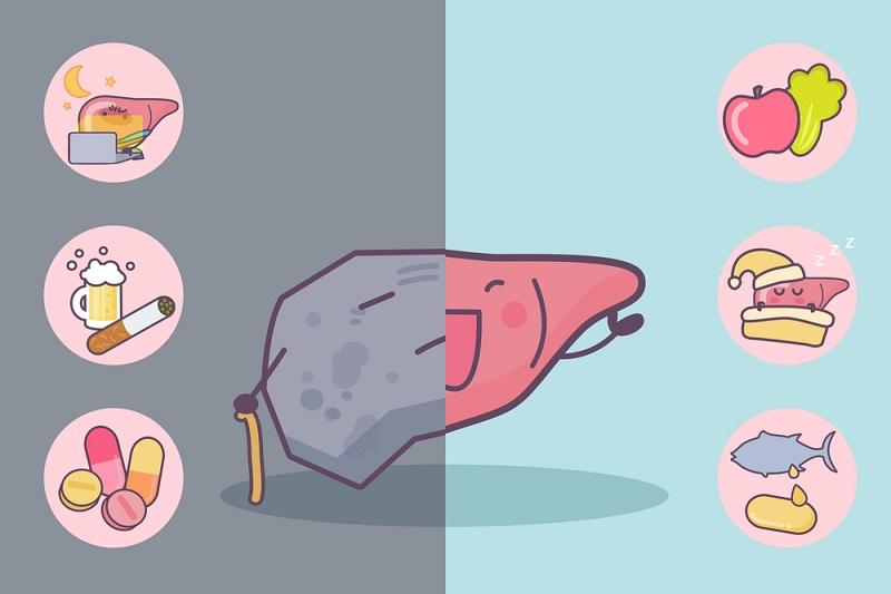 почему болит печень после еды