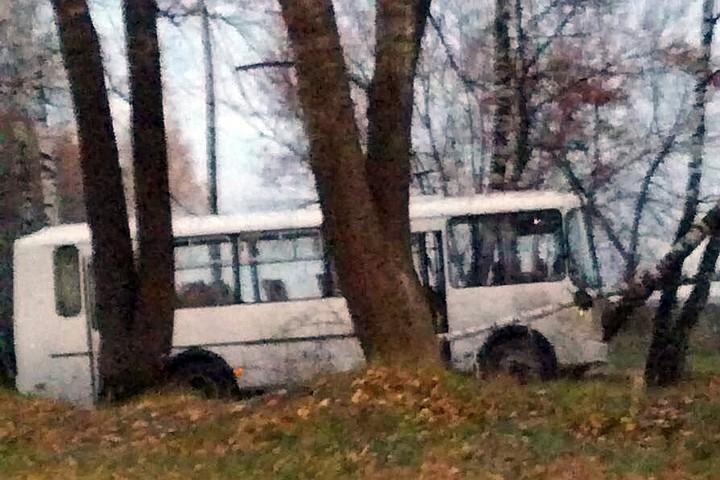 В Подмосковье в аварии с участием маршрутки и автобуса погибли 4 человека