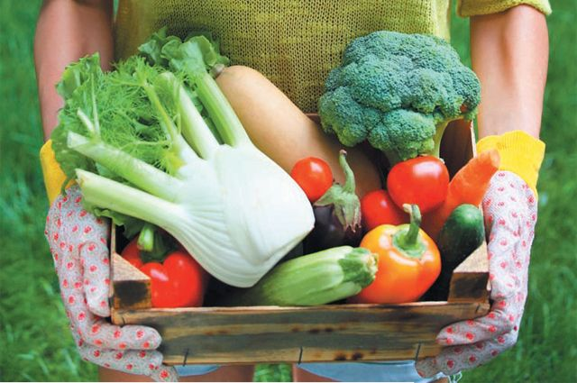 Вариации на тему овощей. Как сохранить витамины в дарах осени?