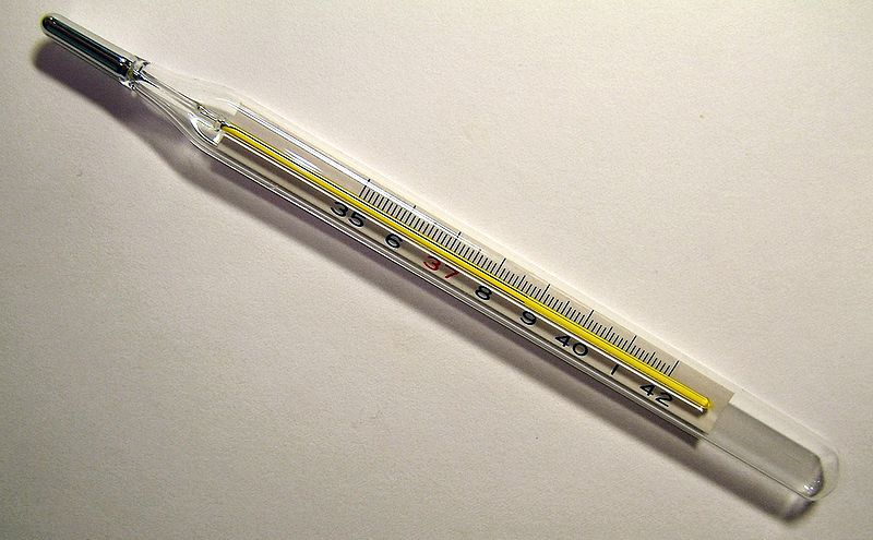 Какой выбрать градусник: плюсы и минусы разных термометров