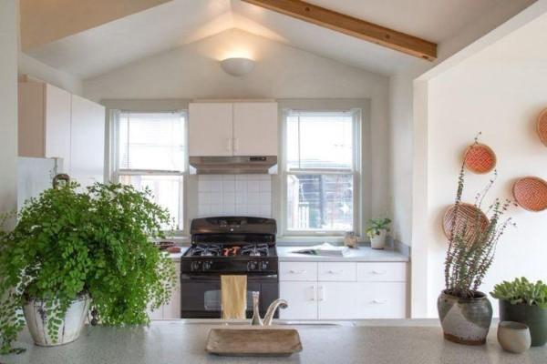 растения в интерьере современной кухни