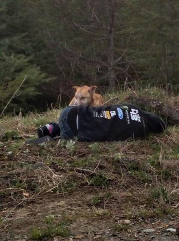 Она лежала на земле, не подавая признаков жизни... Посмотрите, что сделал этот бездомный пес!