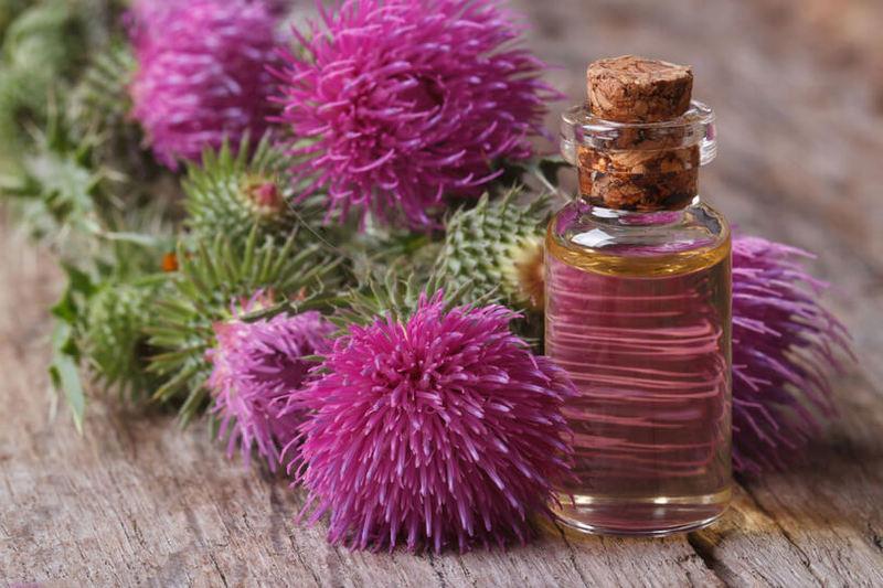 Укрепляем волосы при помощи репейного масла