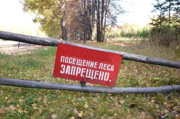 Иду по лесу и вдруг, бац, альбац....штраф 300баксов ))