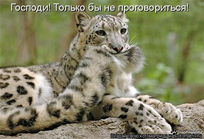 Свежий юмор. Обсуждение на LiveInternet - Российский Сервис …