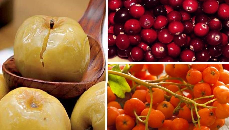 Секреты заготовки моченых фруктов, овощей и ягод