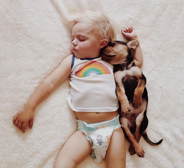 Спящий дуэт  дружба, ребенок, собака