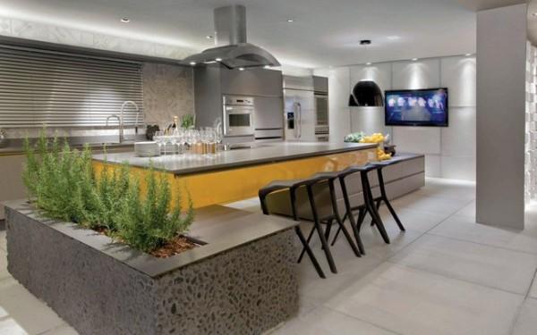 минималистический дизайн кухни с живыми растениями