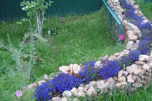 необычные решения в дизайне цветников