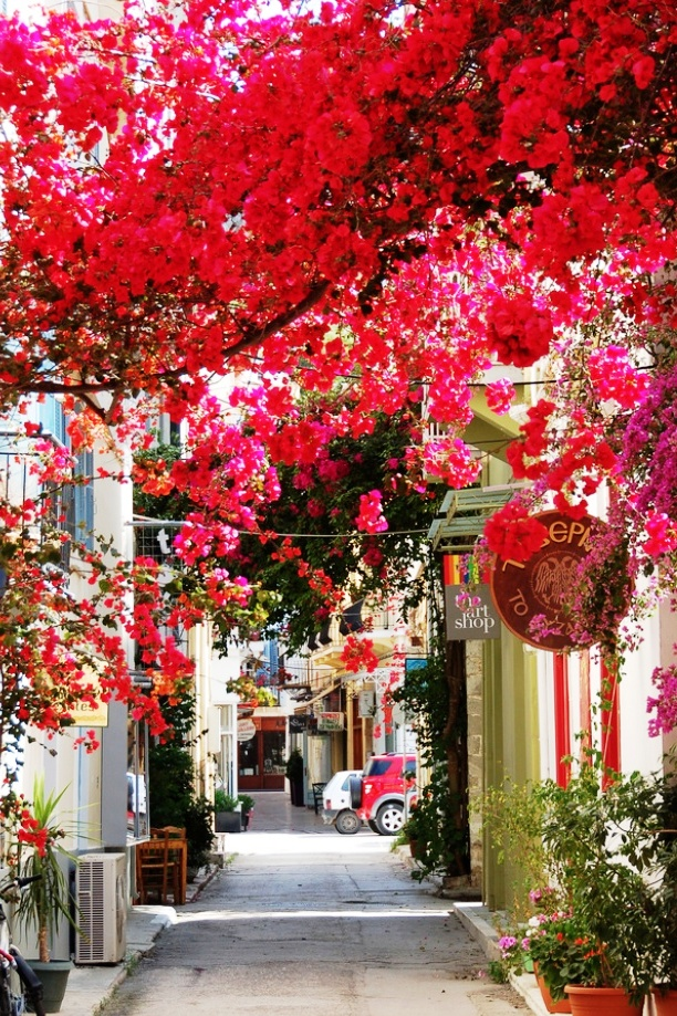 Для всех, кто соскучился по весне и цветам — 12 прекрасных улиц, расцветающих с приходом весны