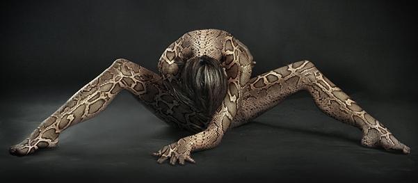 Новый год 2013 черной змеи