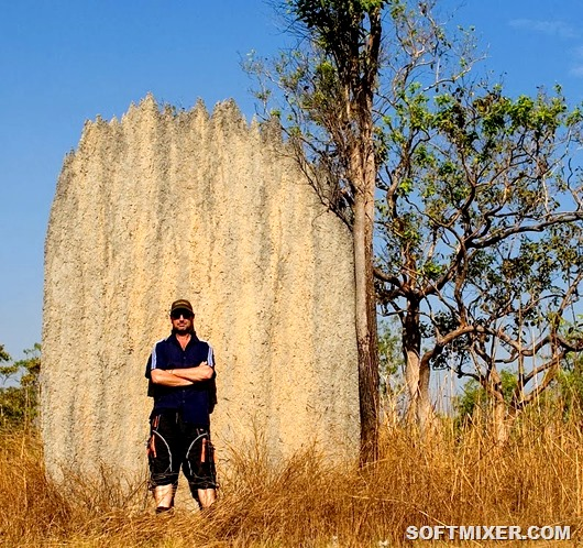 magnetic-termites-52
