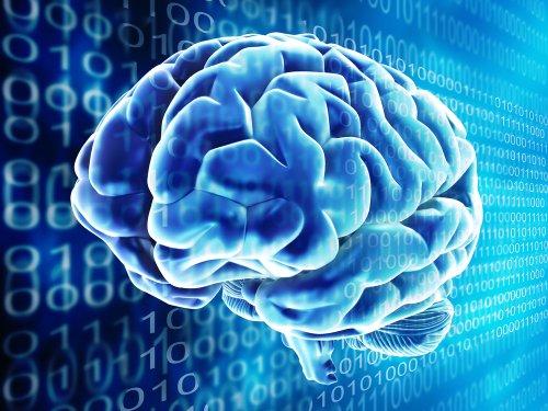 Компания Intel прогнозирует на 2015 год появление первых самообучающихся компьютеров, работающих на принципах головного мозга.