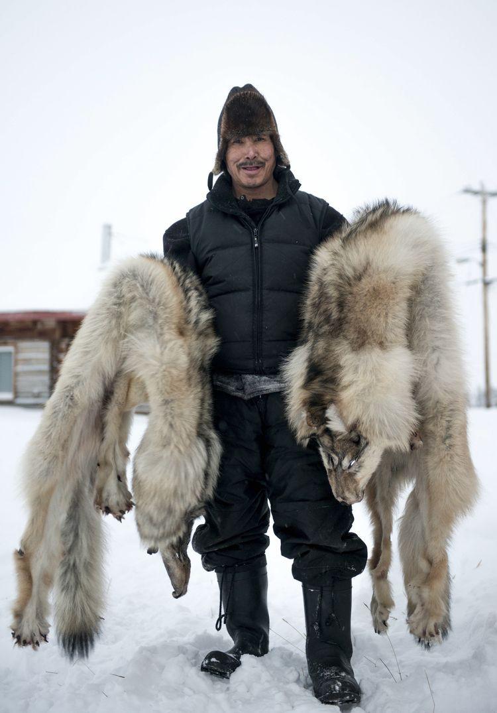 Спорная индустрия добычи меха на Северо-Западных территориях