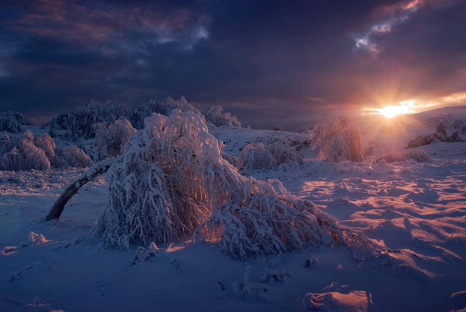 2820 Зимний Крым