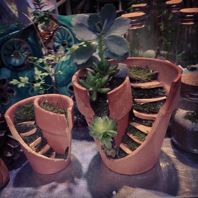 Новая жизнь разбитых горшков  горшок, цветы, сделай сам
