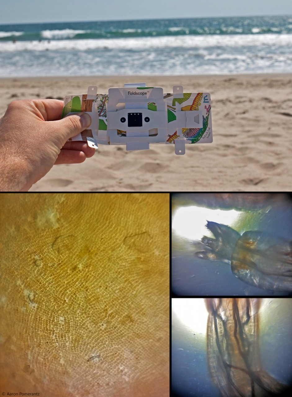 Гениальное просто: картонка для макросъемки со смартфона за $1