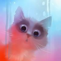 Коты, кошки и котята от Apofiss