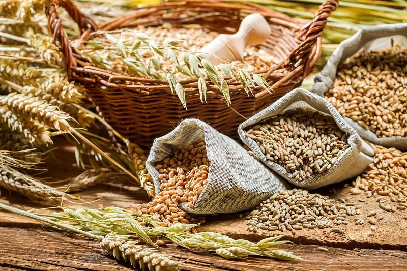 продукты питания для работы мозга