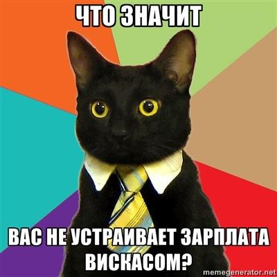 7 звездных котов Интернета