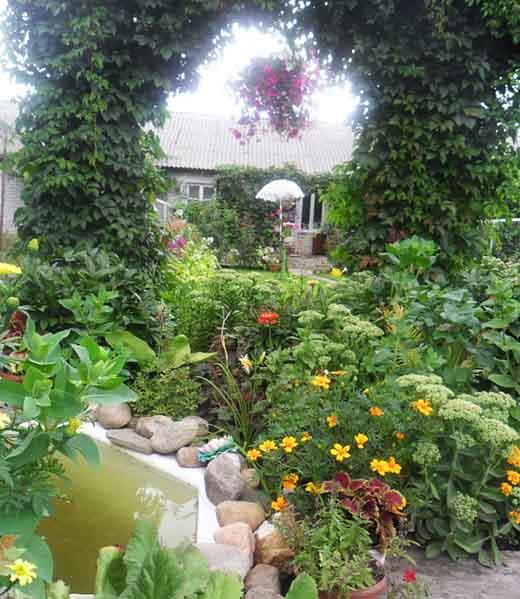 Сад маленького участка