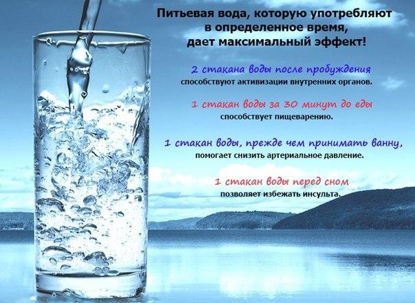 Пей с пользой! Профессиональ…