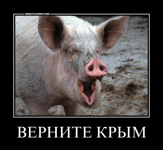 Украина попросила вернуть Крым