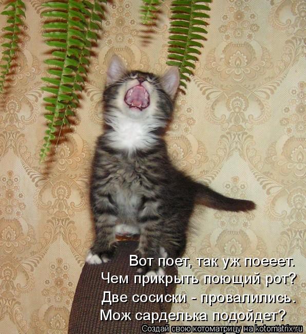 Котоматрица: Вот поет, так уж поееет. Чем прикрыть поющий рот? Две сосиски - провалились. Мож сарделька подойдет?