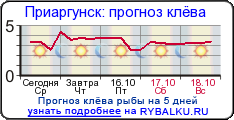 прогноз клева в городе павлодар