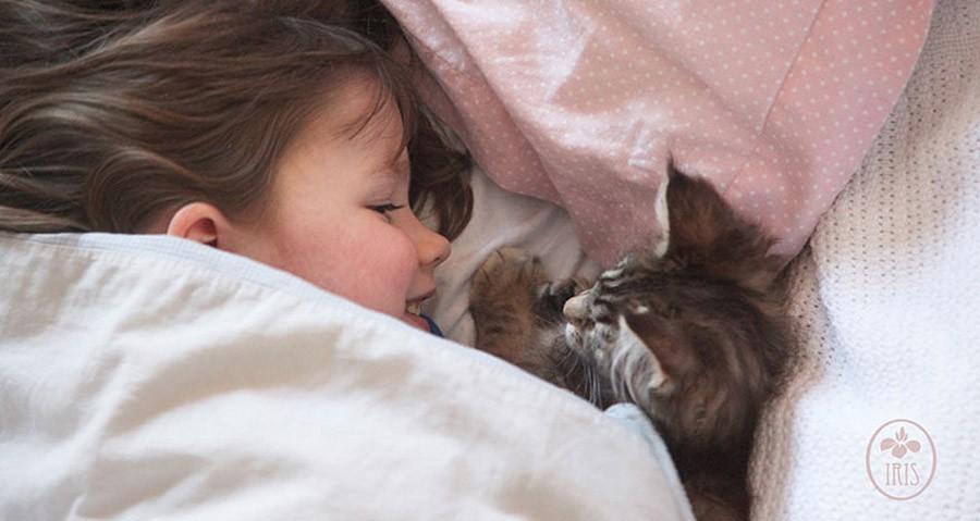 IrisandThula10 Как кошка Тула помогает девочке с аутизмом