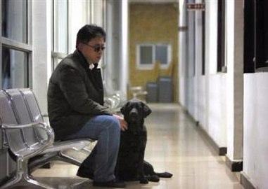 Китайские воры вернули собаку-поводыря с запиской о покаянии.