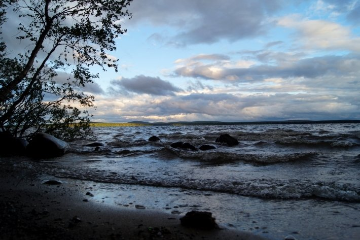 В Тюменской области на берегу озера полиция нашла труп мужчины