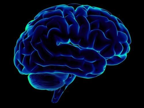 Память.  Аюрведа. В аюрведе существует огромное количество простых, но очень эффективных рекомендаций для улучшения памяти.