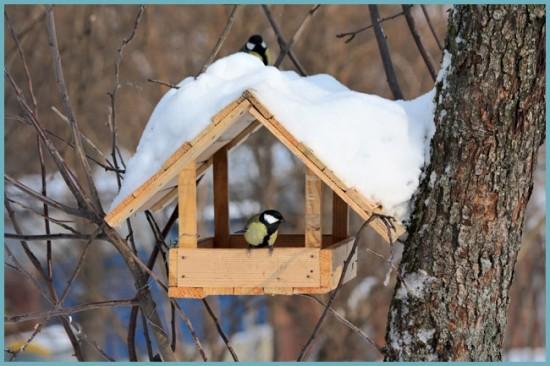 Идеи кормушек для птиц из подручных материалов