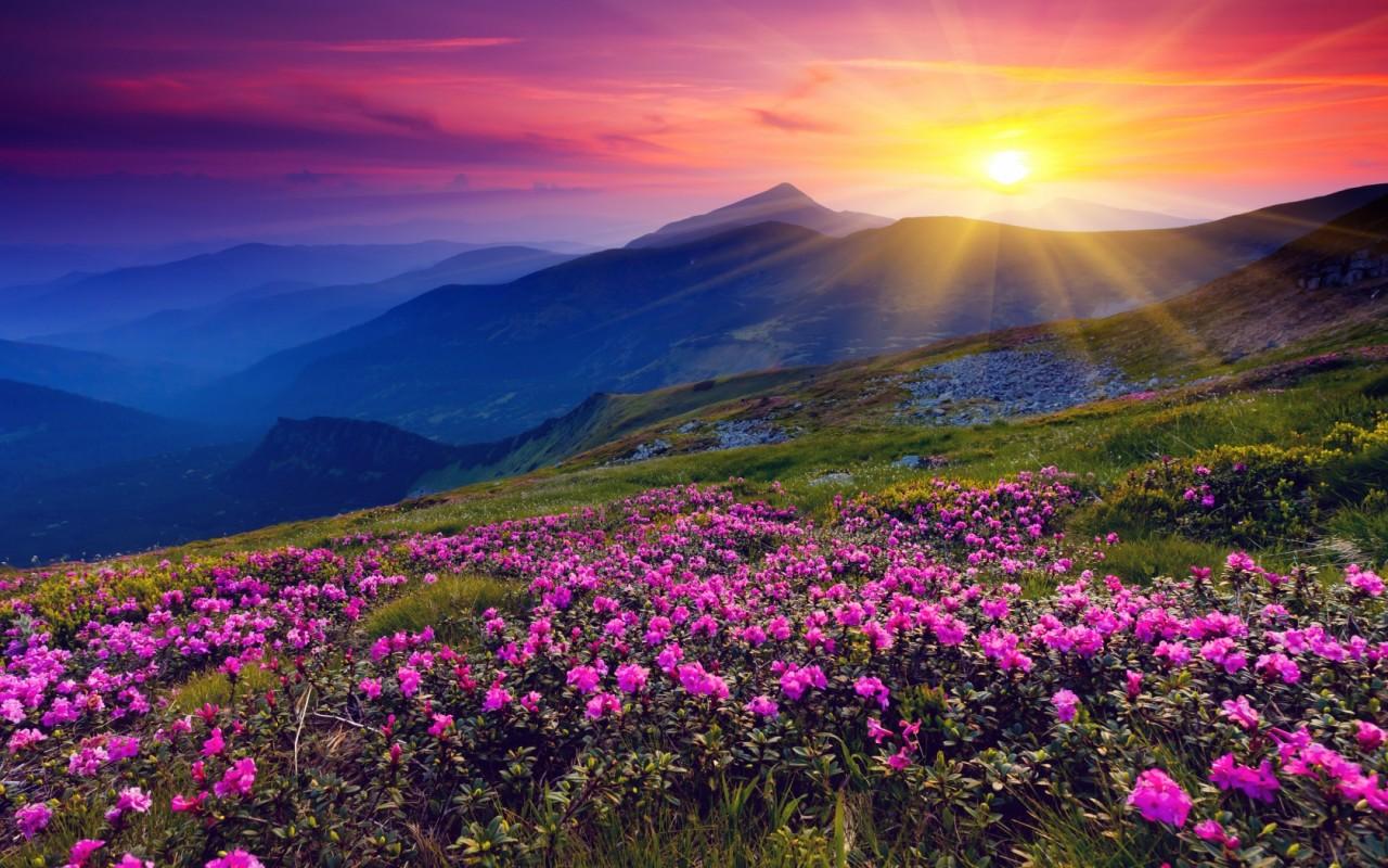 Краски рассветов и закатов