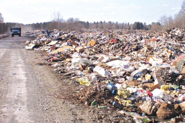 В Челябинске ввели режим повышенной опасности из-за проблем с мусором