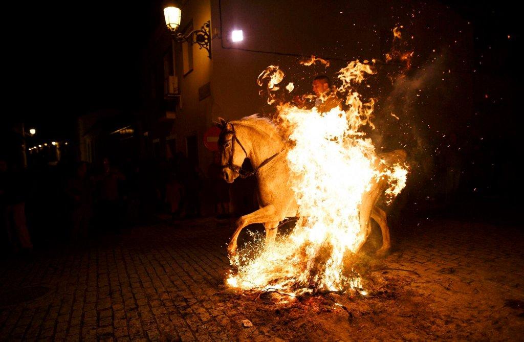 Luminarias - испанский фестиваль огня и животных-15