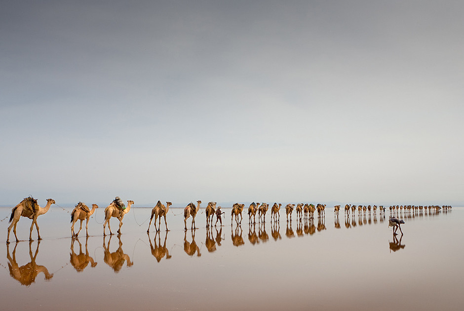 Объективная красота конкурс Siena International Photo Award (SIPA), фото