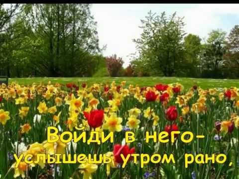 Есть  ДУША  у цветов