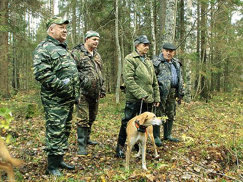 Русские гончие, вотличие от других охотничьих собак, которые могут преследовать зверя последу сголосом, обладают особенно сильными, звучными ипевучими голосами. Фото Екатерины Смирновой